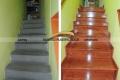escalera-de-espina-corona-2