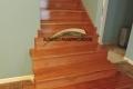 escalera-de-cedro